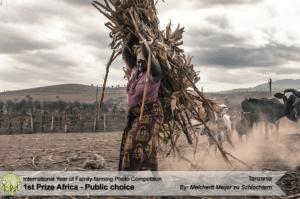 Publieksprijs Africa